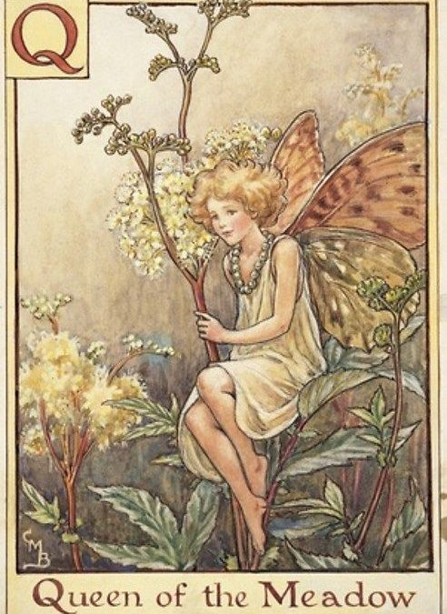 Favoring the Fairies