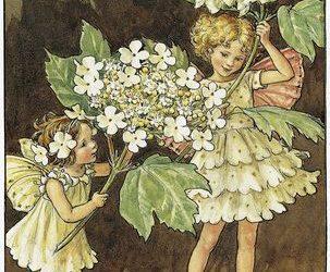 Fairies in Literature